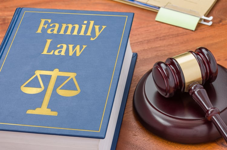 Important Facts About Family Law and Lawyers